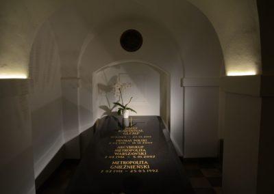 Bazylika Archikatedralna w Warszawie p.w. Męczeństwa św. Jana Chrzciciela, podziemia, fot. Łukasz Kopeć