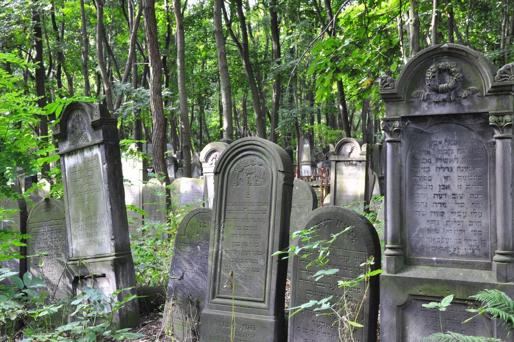 Cmentarz Żydowski przy ulicy Okopowej, fot.Tomasz Nowak