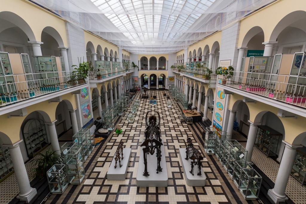 Muzeum Geologiczne, fot. Filip Kwiatkowski