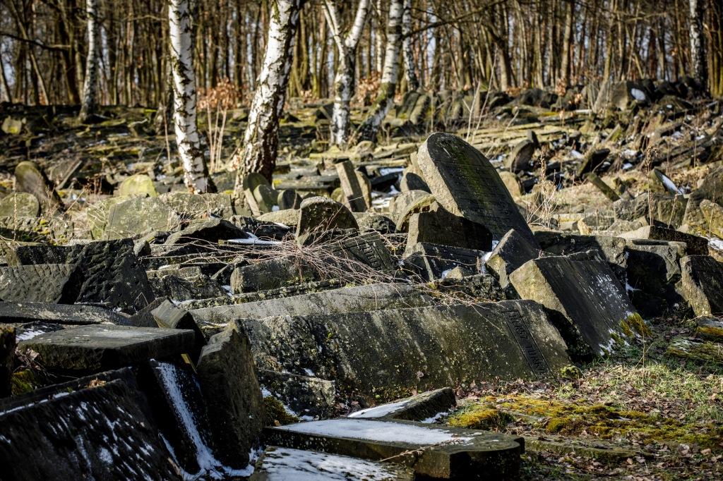 Cmentarz Żydowski na Bródnie, fot. Andrzej Stawiński