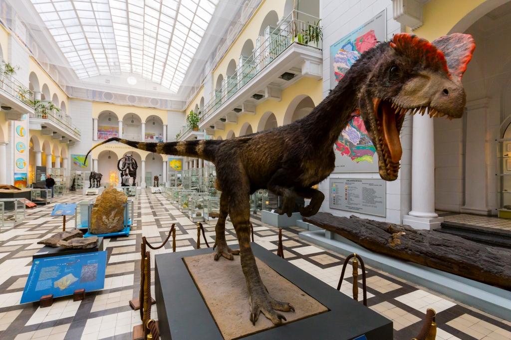 Muzeum Geologiczne - oficjalny portal turystyczny stolicy Polski
