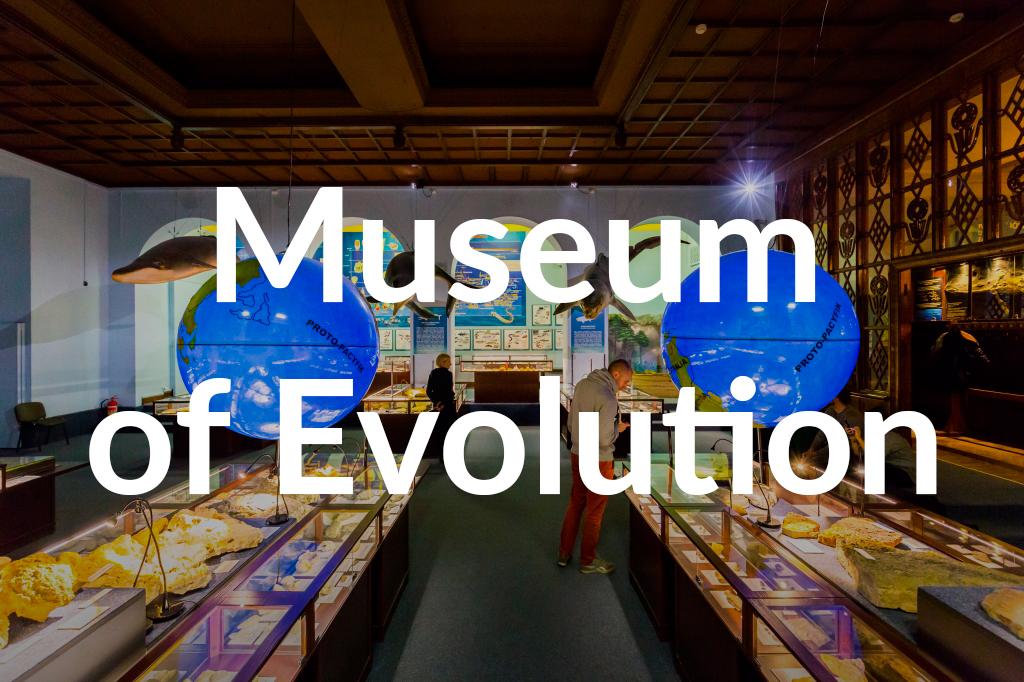 Muzeum Ewolucji, fot. Filip Kwiatkowski