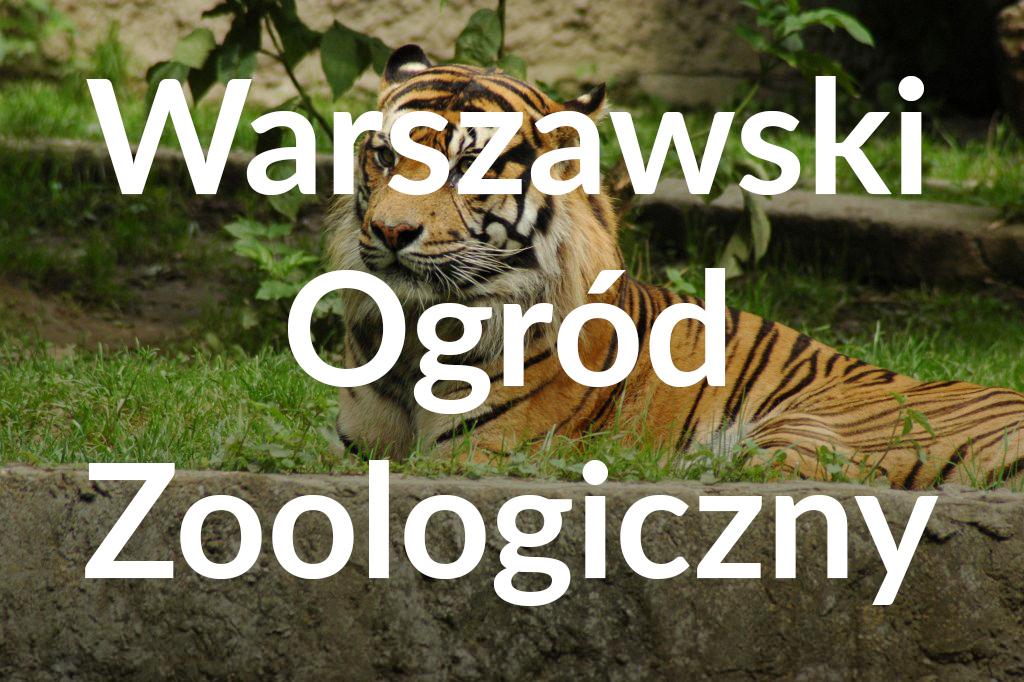 Warszawski Ogród Zoologiczny, fot.Anna Witkowska