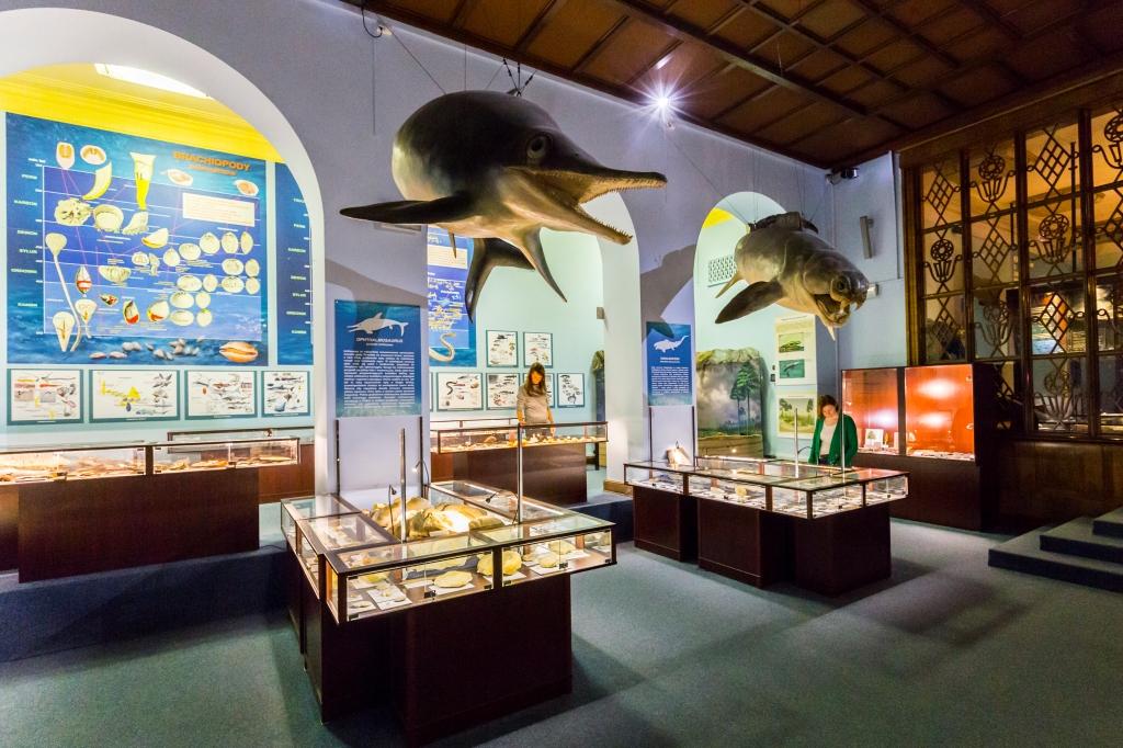 Muzeum Ewolucji, fot.Filip Kwiatkowski