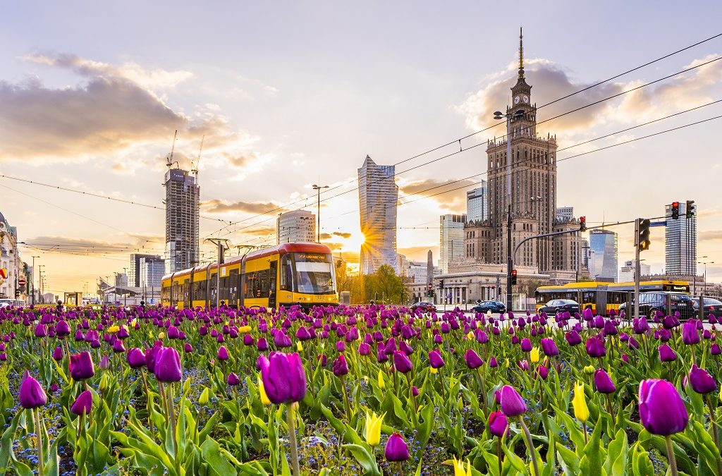 Best spots for a spring walk in Warsaw